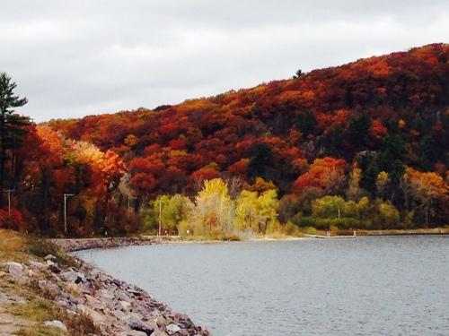Fall #1
